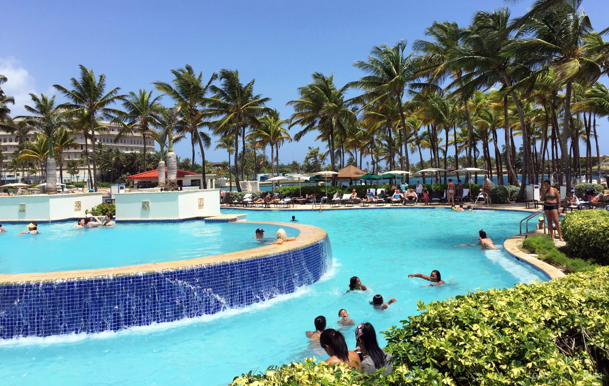 Caribe Hilton basseng
