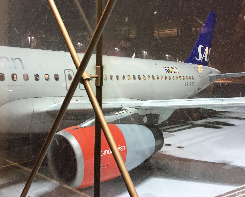 SAS Go København fly