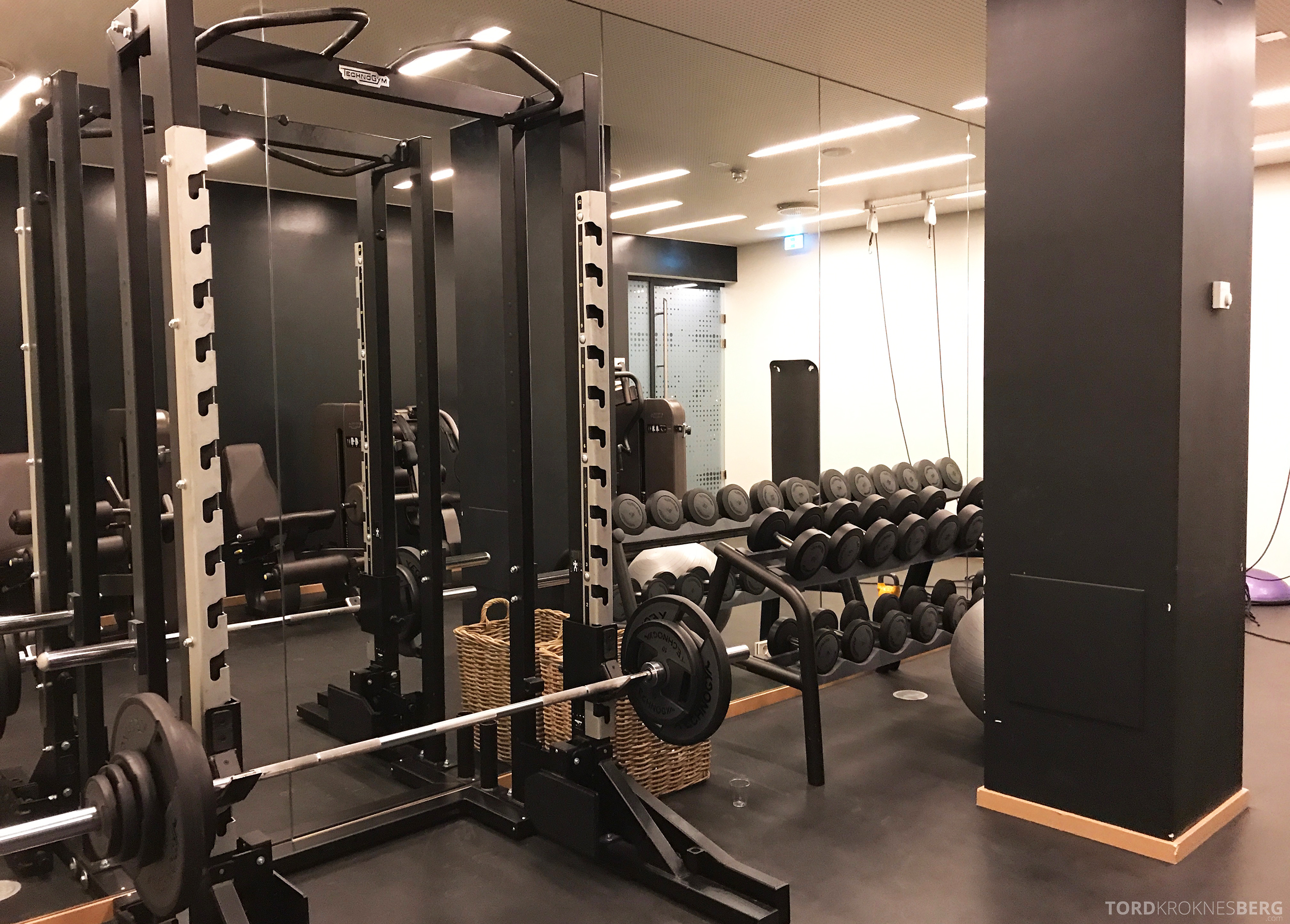 The Thief Tjuvholmen gym vekter