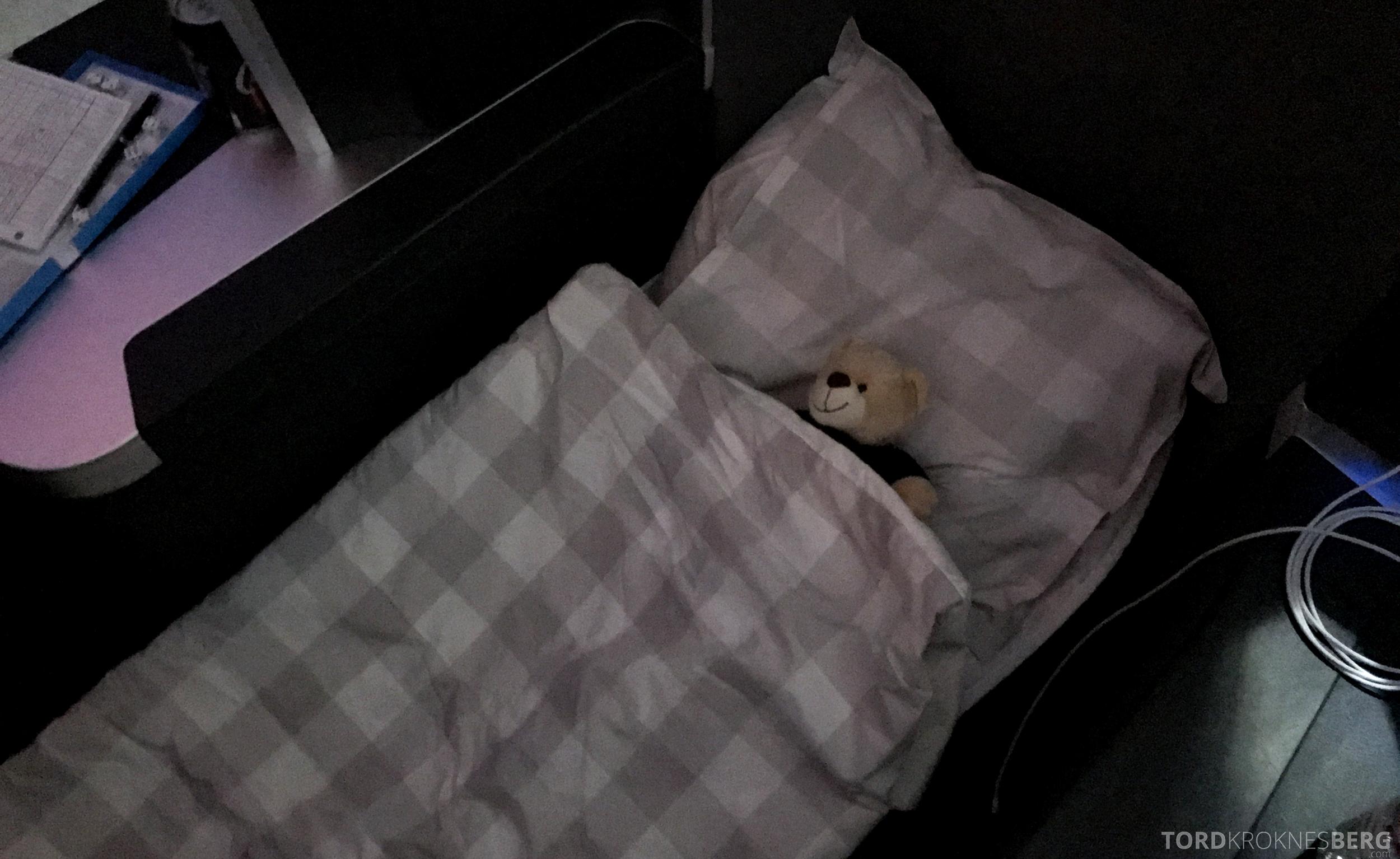 SAS Business Class San Francisco seng
