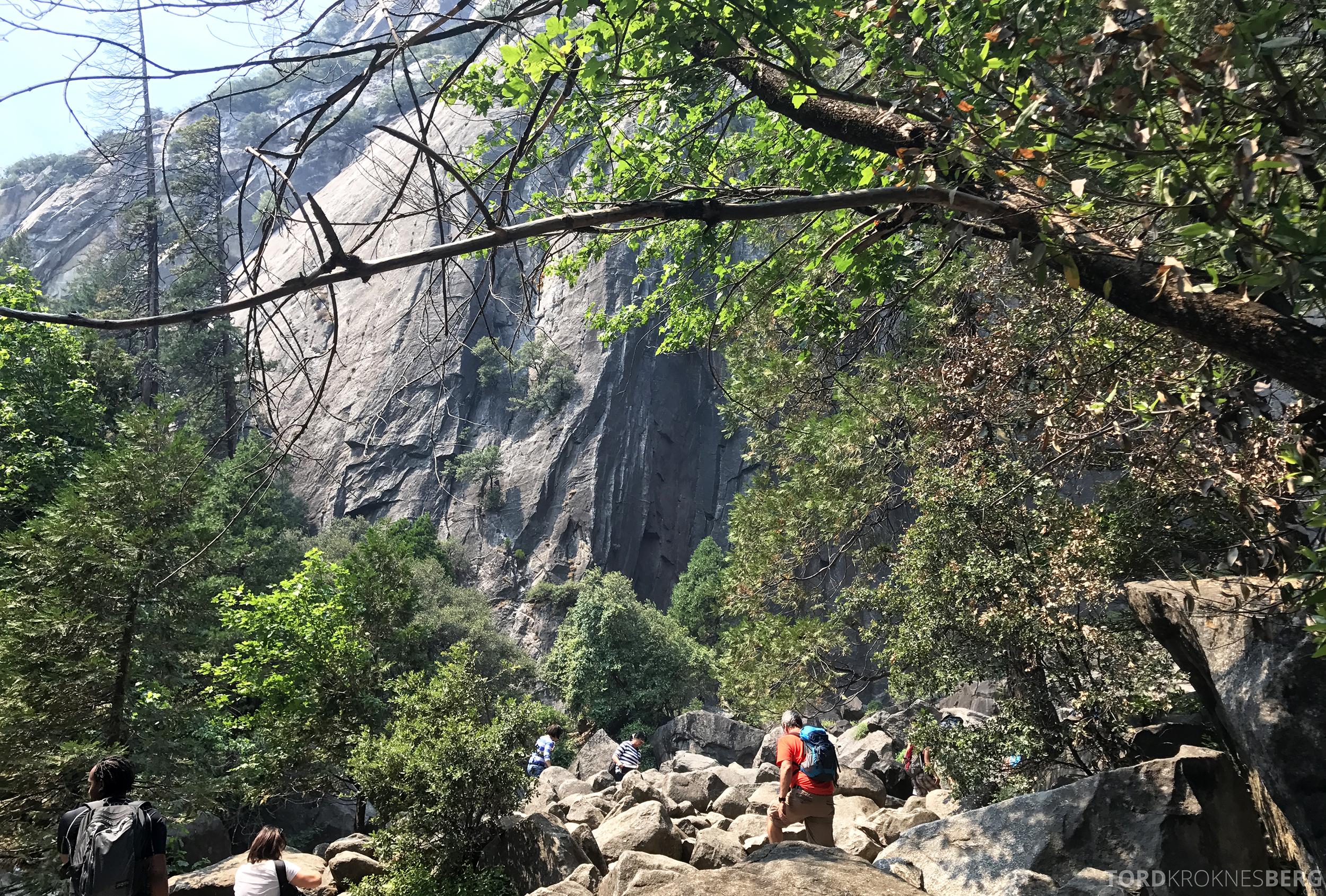 Yosemite Tour turterreng