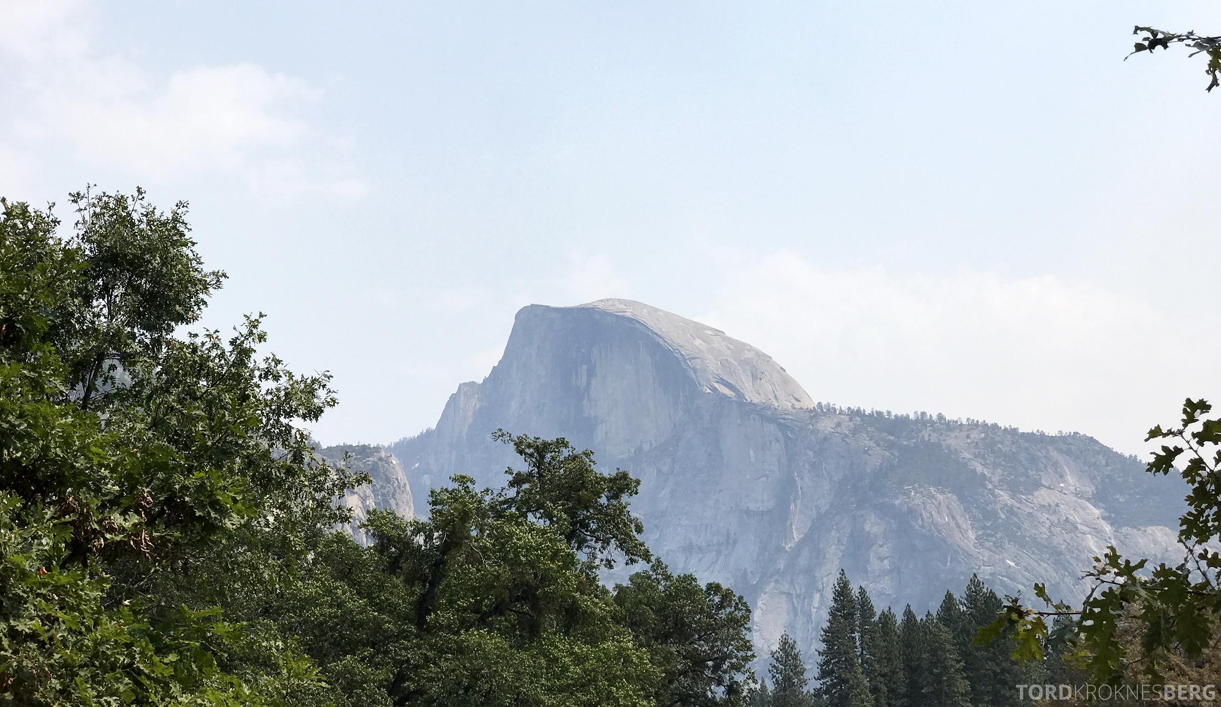 Yosemite Tour half dome
