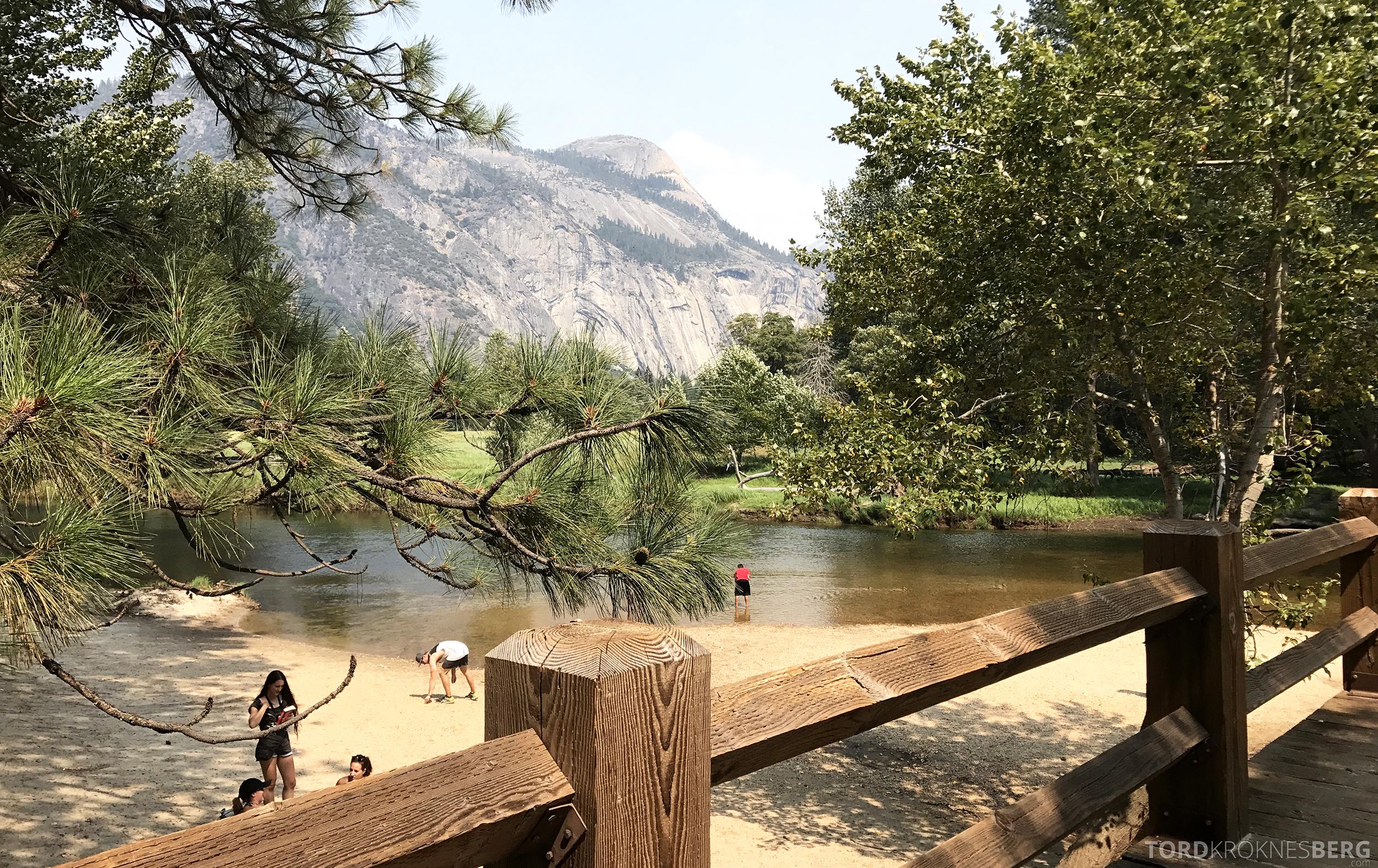 Yosemite Tour bro