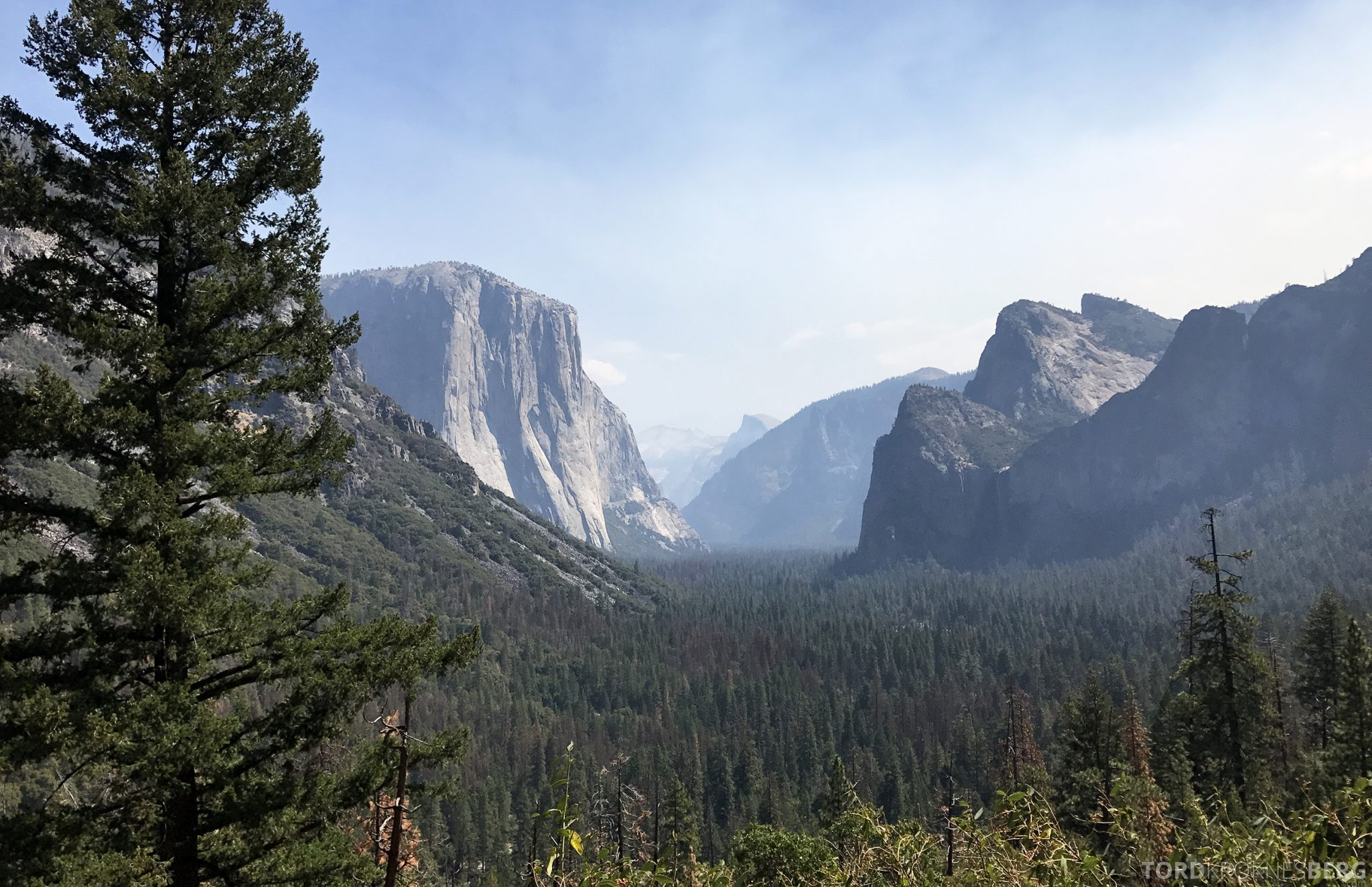 Yosemite Tour El Capitan