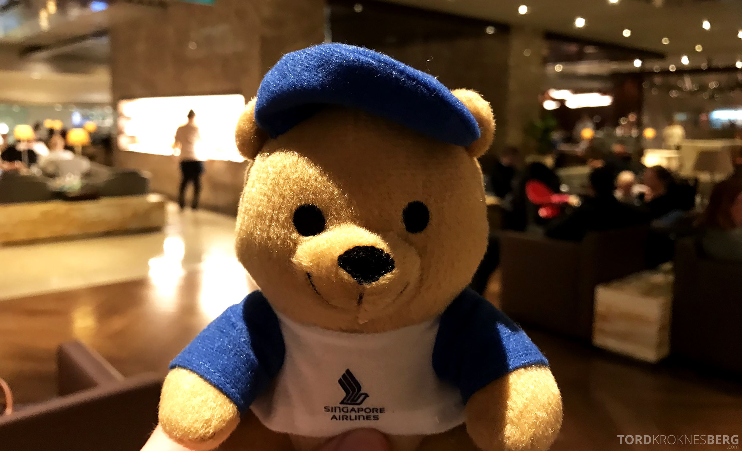 Singapore Airlines Business Class Singapore Amsterdam teddy