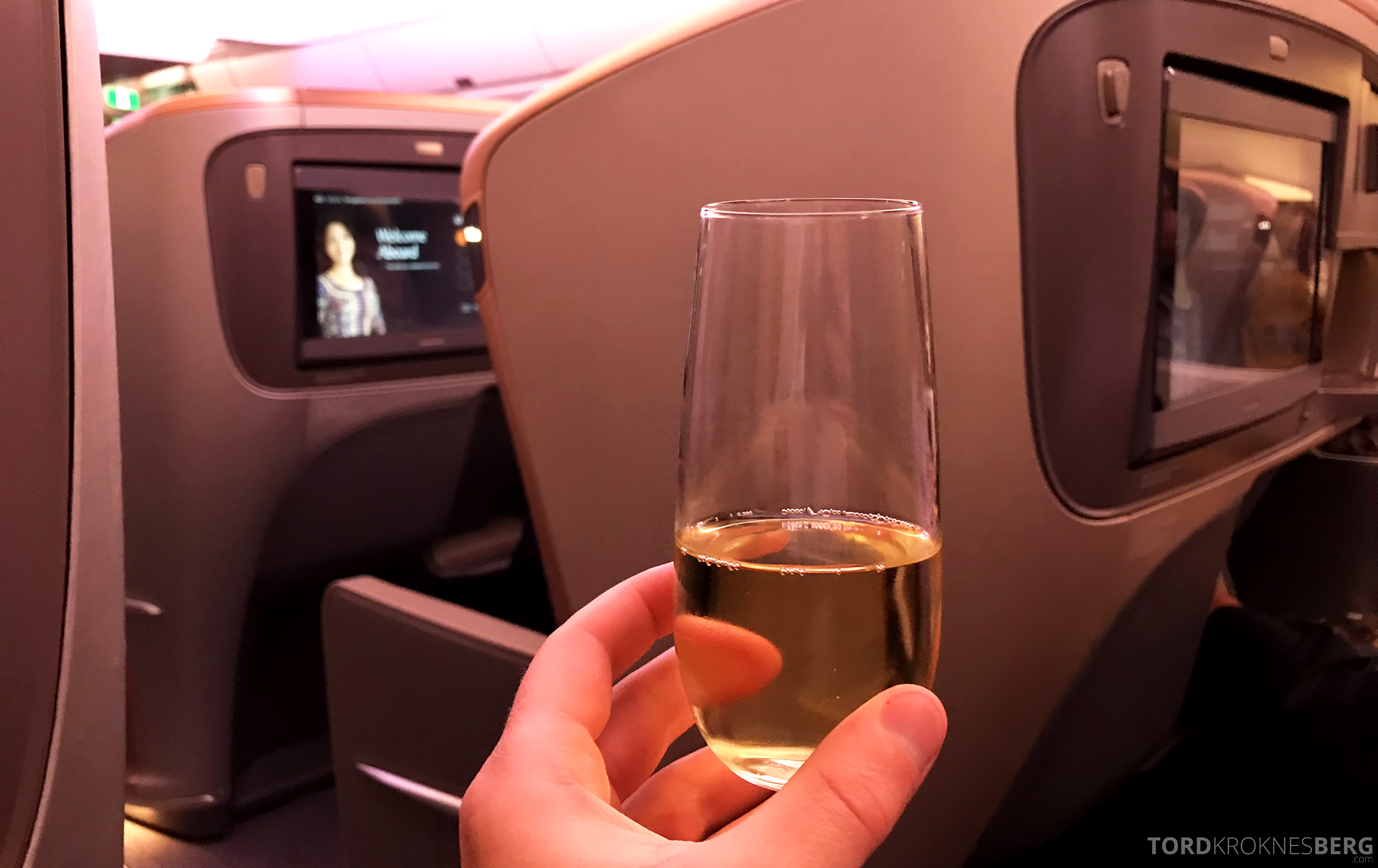 Singapore Airlines Business Class Singapore Amsterdam champagne