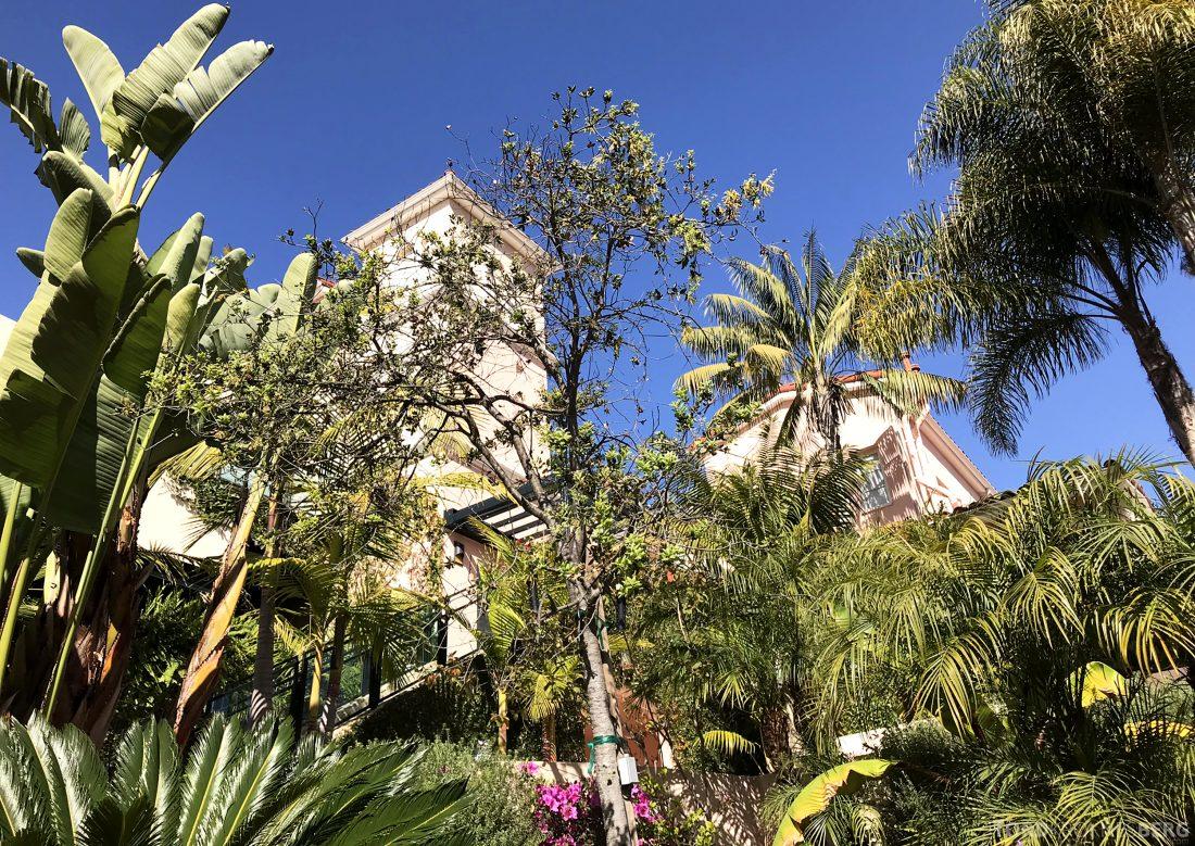 Hotel Bel-Air Los Angeles botanikk