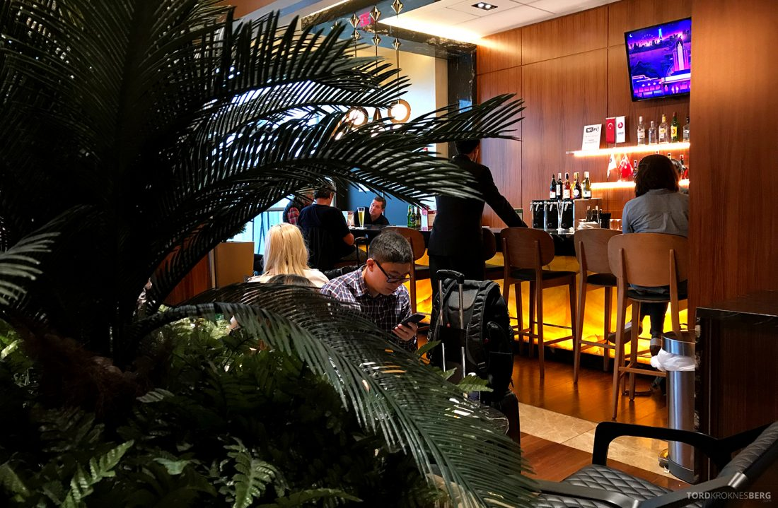 Turkish Airlines Lounge Washington planter bar