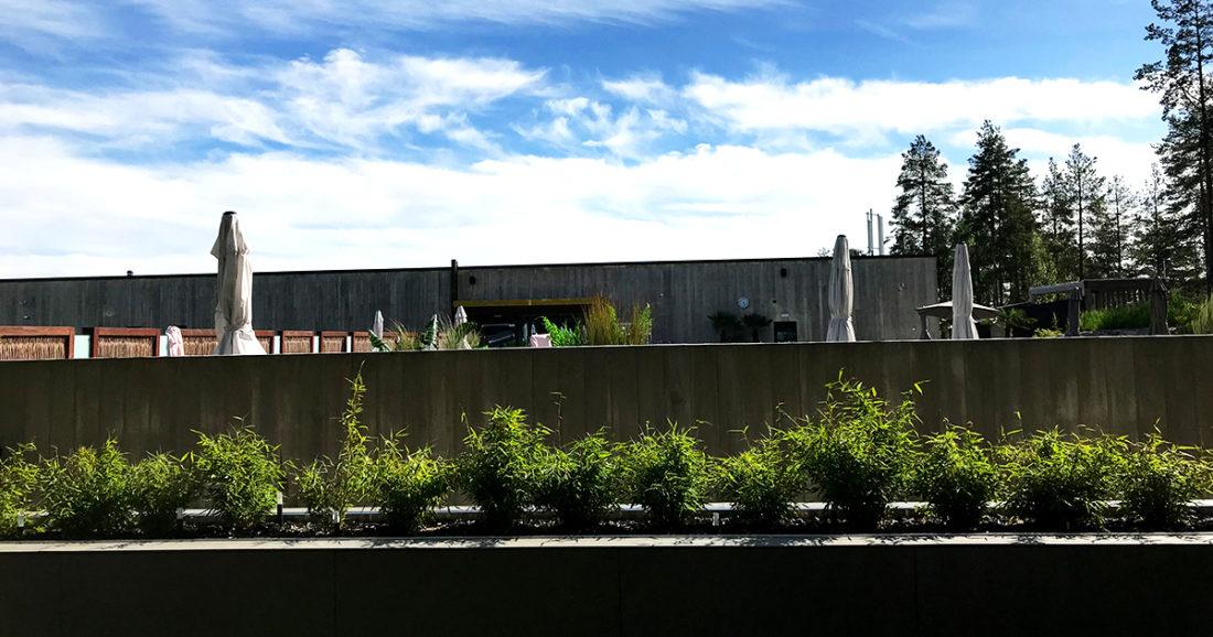 The Well Spa Oslo utendørs basseng fra skogen