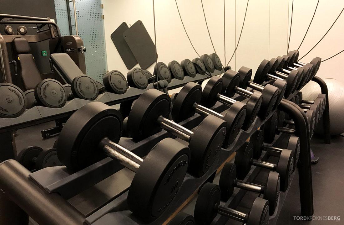 The Thief Spa Gym Oslo vekter
