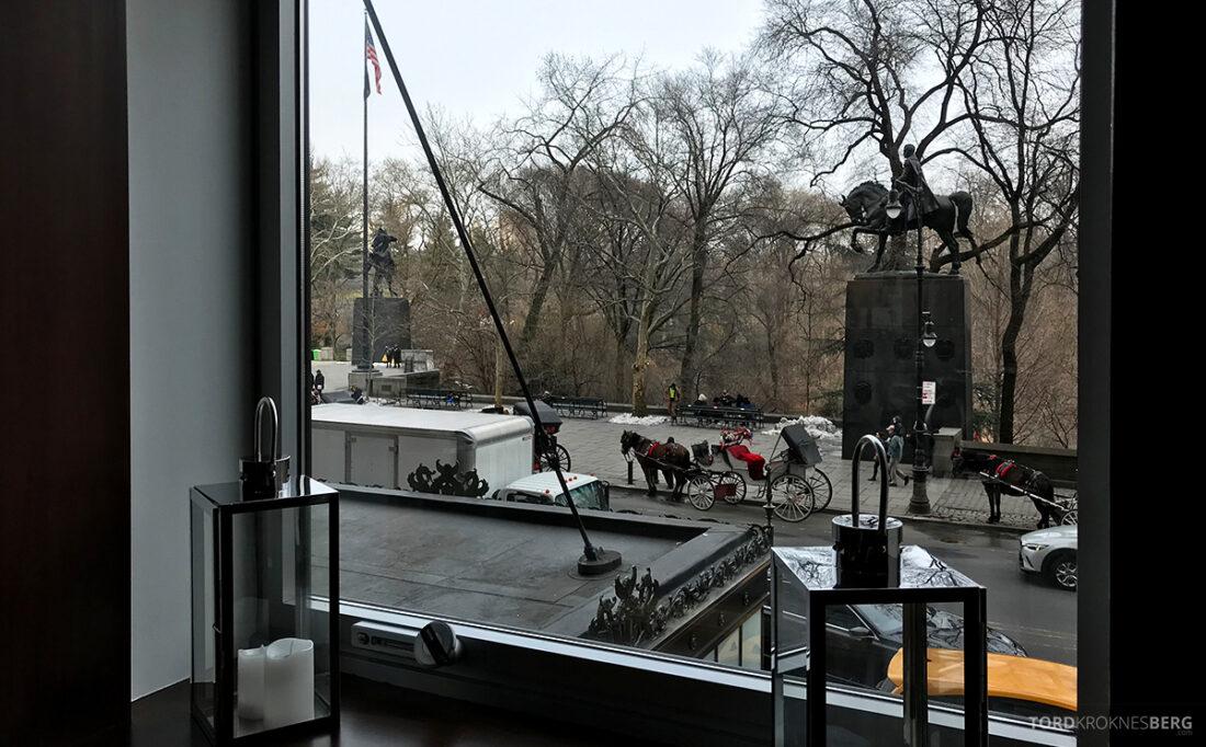 Ritz-Carlton Hotel New York Central Park Club Lounge krembeliggeneht