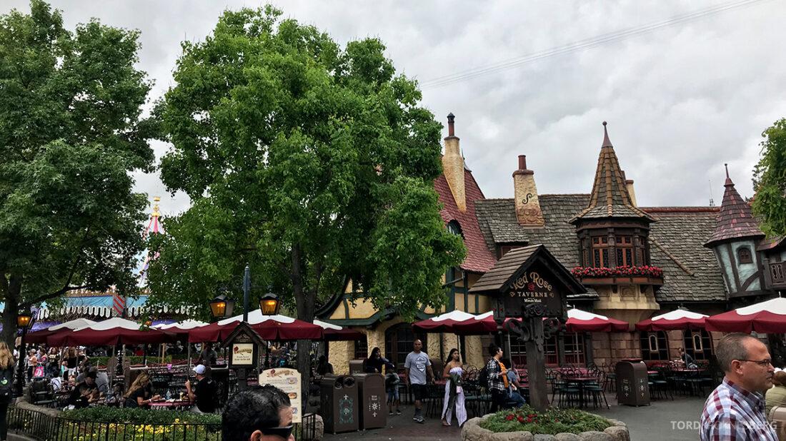 Disneyland California Red Rose