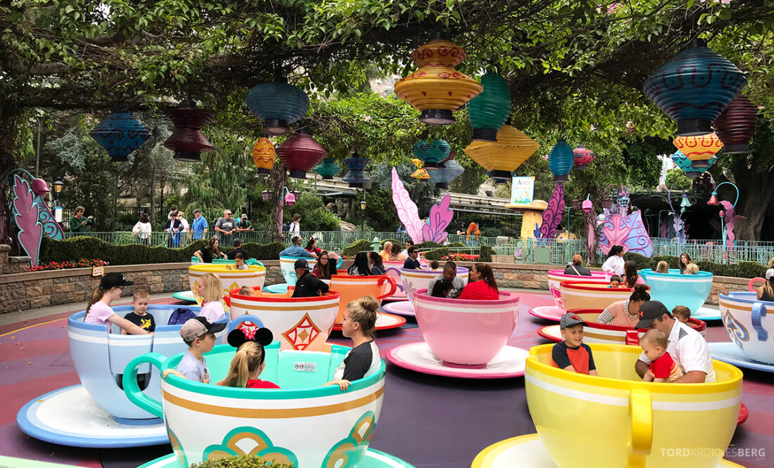 Disneyland California kopper